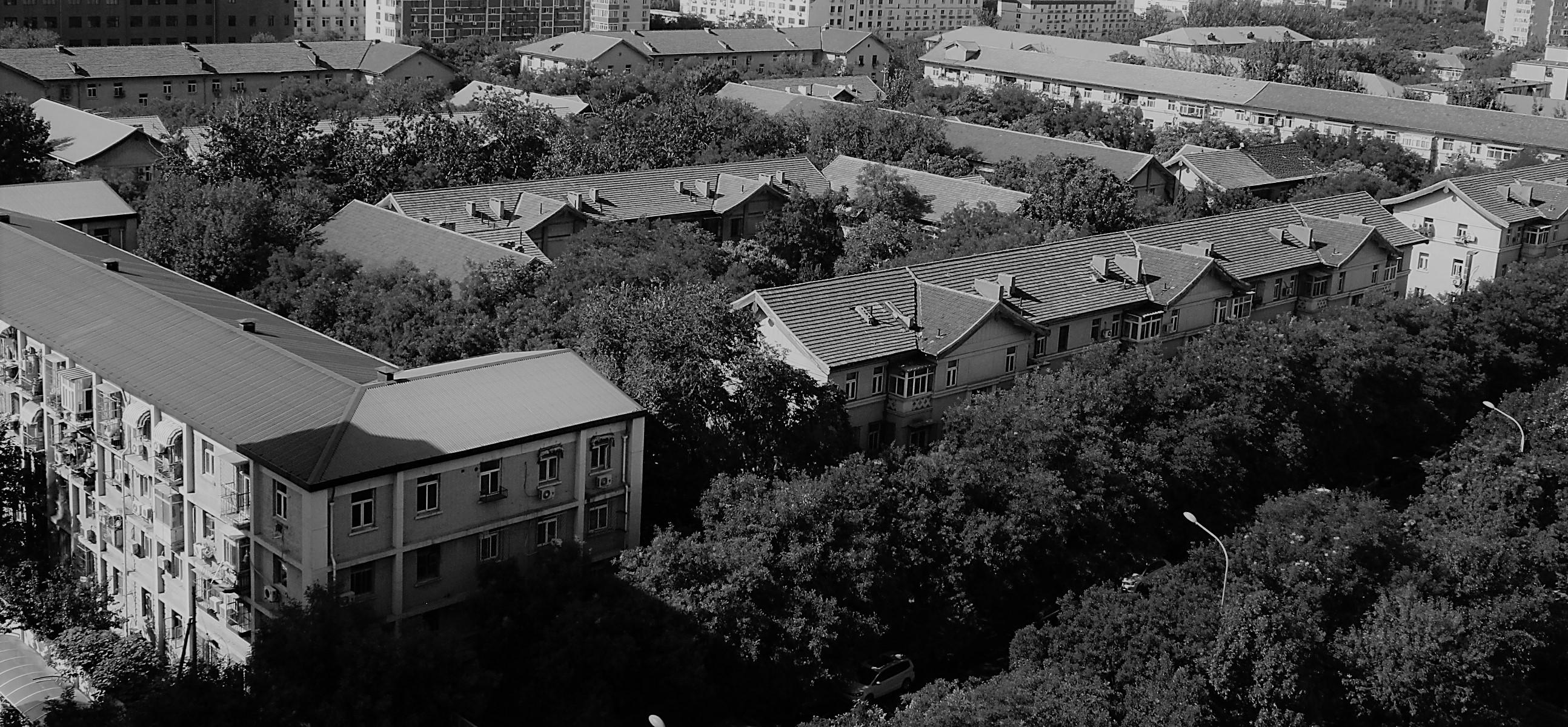 一張黑白照片,是從高處俯瞰北京西城區西邊門外國務院宿舍。外面一圈四層樓房,裡面一圈三層樓房,綠樹成蔭。