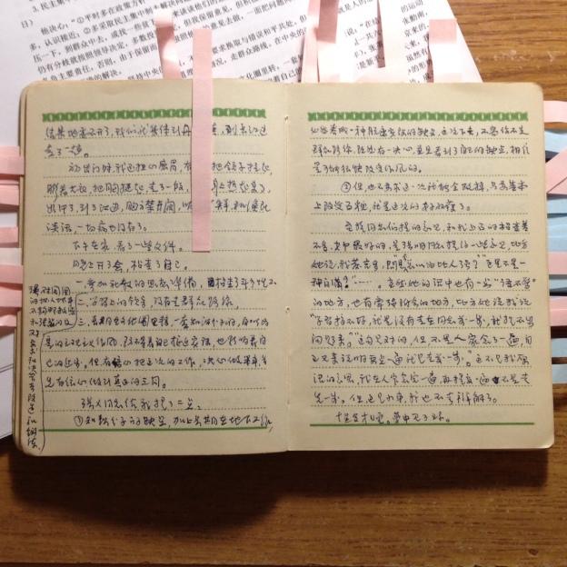 在四清日記右邊一頁最後一行寫著:夢中見了瓊——那是張佩華曾用名。