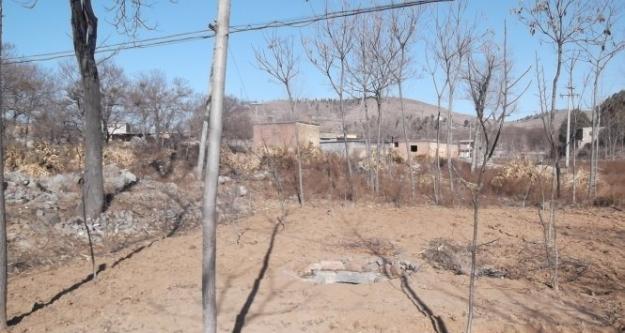 荒蕪的河灘上有一口青石砌邊的井眼,寥寥幾株小樹,遠山下有幾棟泥土房子和電線桿子。