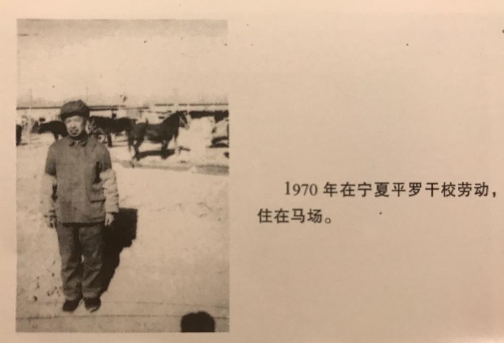 吳荻舟1970年在幹校照的一張照片,那時他人乾瘦,住在馬場,身後是馬廄和馬群。